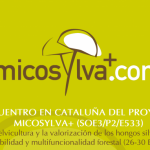 Micosylva workshop in Catalonia from the 26th to 30th of January